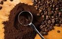 Những mẹo hay với bã cà phê