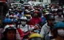 Sở GTVT, Tài chính HN ủng hộ dừng thu phí đường bộ xe máy