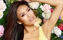 Nguyễn Thị Loan trượt top 15 dự đoán tại Miss Universe 2017