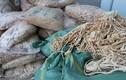 Kiểm tra chợ Đồng Xuân, phát hiện thực phẩm đáng ngờ