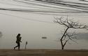 Những khoảnh khắc đẹp mùa đông Hà Nội
