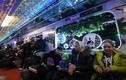 Clip: Cận cảnh tàu điện ngầm đón năm mới ở Moscow