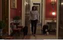 Bà Obama tung video cùng chó cưng đi dạo lần cuối trong Nhà Trắng