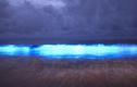 Xem nước biển phát sáng bí ẩn ở Australia