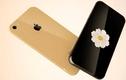 """Lộ diện iPhone 8: Người dân Mỹ """"sốt xình xịch"""""""
