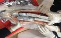 Tinh vi giấu sản phẩm làm từ động vật hoang dã trong bụng cá