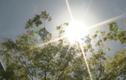 Tác hại đáng sợ của nắng đầu hè không phải ai cũng biết
