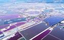 Bí ẩn hồ muối có triệu sắc màu