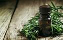 Những lợi ích đáng kinh ngạc của tinh dầu cây trà