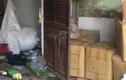 Kẻ trộm ôm bình gas suốt 5 tiếng, dọa cho nổ khi bị phát hiện