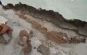 Video: Chưa bàn giao, chung cư đã nứt móng ở Hà Nội