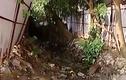 Video: Kênh mương Hà Nội vẫn ô nhiễm sau cải tạo