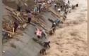 Video: Giật mình cảnh dân vớt củi ngay trên dòng lũ
