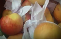 Video: Bí mật hoa quả tươi lâu hàng tháng trời