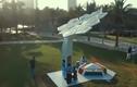 """Video: """"Cây cọ thông minh'' phát wifi miễn phí tại Dubai"""
