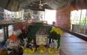 Thông tin tìm thấy mộ Trạng trình Nguyễn Bỉnh Khiêm: Bộ VHTTDL vào cuộc