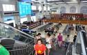 Vào cảng Tuần Châu phải qua khu mua sắm: Phân luồng hay tận thu?