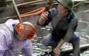 Hình ảnh mỏ than Quảng Ninh bị mưa lũ tàn phá