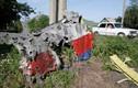 Chuyên gia Đức: MH17 bị Su-25 bắn vào buồng lái?