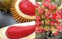 Thích thú sầu riêng ruột đỏ giá 130.000 đồng/kg
