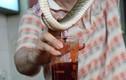Hình ảnh rợn người trong khu chợ chuyên bán rắn độc