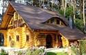 Ngắm những ngôi nhà gỗ kiến trúc độc đáo nhất thế giới