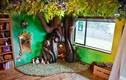 Ông bố biến phòng ngủ con gái thành nhà cây cổ tích