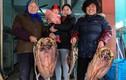Bên trong những làng nghề làm thực phẩm Tết
