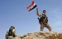 Quân đội Syria và người Kurd phối hợp đánh phiến quân IS
