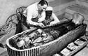 15 sự thật huyền bí về Ai Cập cổ đại