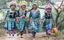Ảnh Mộc Châu ngày Tết của nhiếp ảnh gia Việt gây sốt