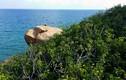 Ảnh: Trải nghiệm cuộc sống hoang dã trên đảo Cù Lao Câu