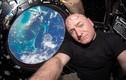 Những bức ảnh tự sướng trong không gian ấn tượng nhất 2015
