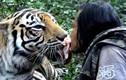 Chuyện lạ hôm nay: Kinh dị chàng trai mớm thịt cho hổ bằng mồm