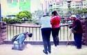 Cô gái quỳ giữa đường, người lớn vô cảm và sự thật đau lòng đằng sau