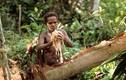 Đến nơi con người sống bí ẩn, từng ăn thịt người ở Indo