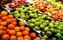 Dư lượng thuốc trừ sâu trên trái cây ảnh hưởng khả năng sinh sản