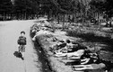 Ảnh giật mình về trại tập trung Bergen-Belsen khi kết thúc CTTG2