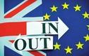 Giải mã những điều bất ngờ nên biết về Brexit