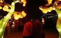 Nóng bừng bừng thị trường thuê...người yêu chơi Tết ở Trung Quốc