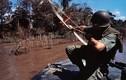 Chiến tranh Việt Nam trong top ảnh kinh điển của thế giới