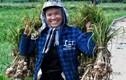 """Ảnh: Mùa thu hoạch """"vàng trắng"""" của nông dân đảo Lý Sơn"""