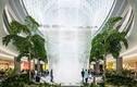Khám phá thác nước trong nhà cao nhất thế giới ở Singapore
