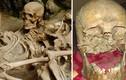 """Cuối cùng hộp sọ """"người hùng Pompeii"""" đã được tìm thấy?"""