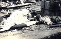 Cảnh tượng hãi hùng tại tâm vụ nổ bom nguyên tử Hiroshima