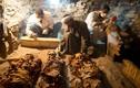 Kho báu giá trị trong mộ cổ Ai Cập 3.500 tuổi