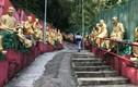 Khám phá tu viện 12.000 Phật vàng ở Hồng Kông