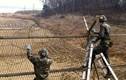 Park Mee-ja: Có thú vị ít người biết về khu phi quân sự (DMZ)
