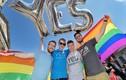 Bất ngờ sau màn cầu hôn đồng giới của Nghị sĩ Australia