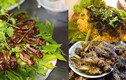 Món ăn từ bọ mùa hè: Nhìn thì ghê ăn lại mê
